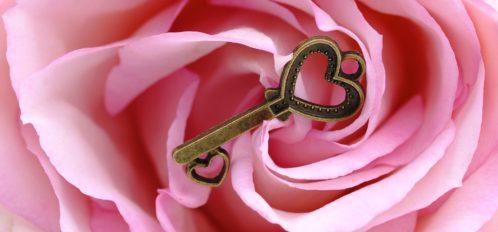 gold key on pink flower